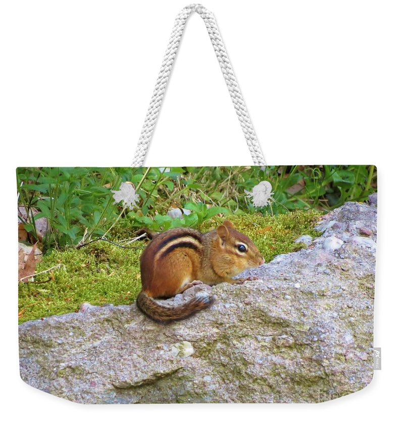 Chipmunk Weekender Tote Bag featuring the photograph Packin Cheeks by Art Dingo