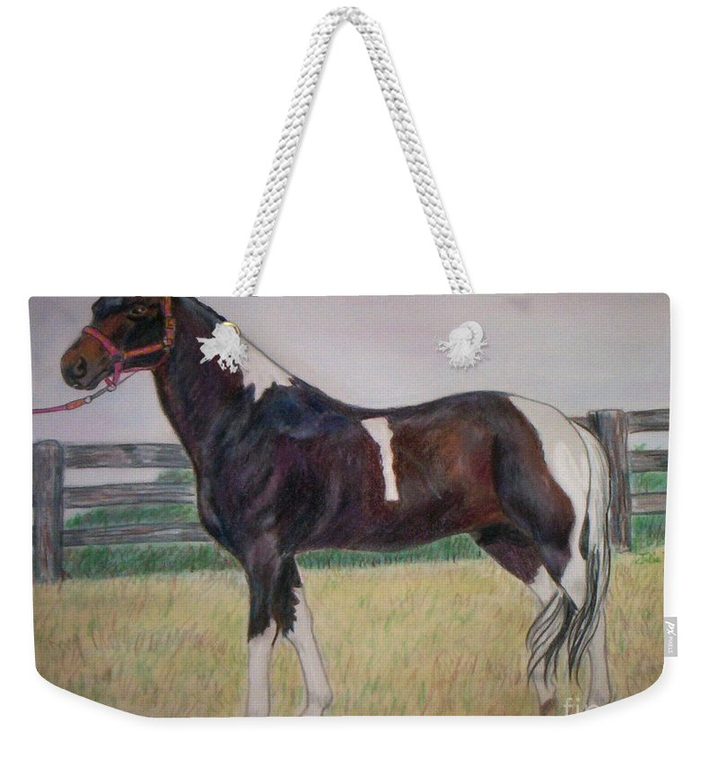 Paint Pony Weekender Tote Bag featuring the drawing Paint by Julie Brugh Riffey