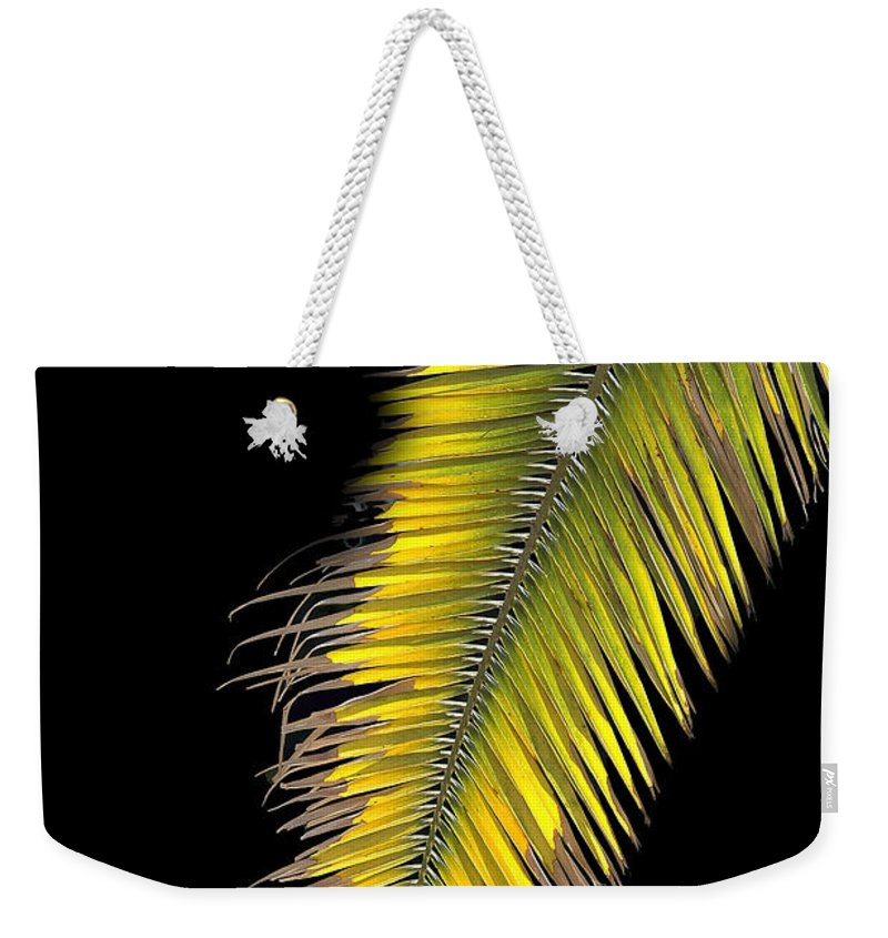 Palm Weekender Tote Bag featuring the photograph Palm Frond Against Black by Mike Nellums
