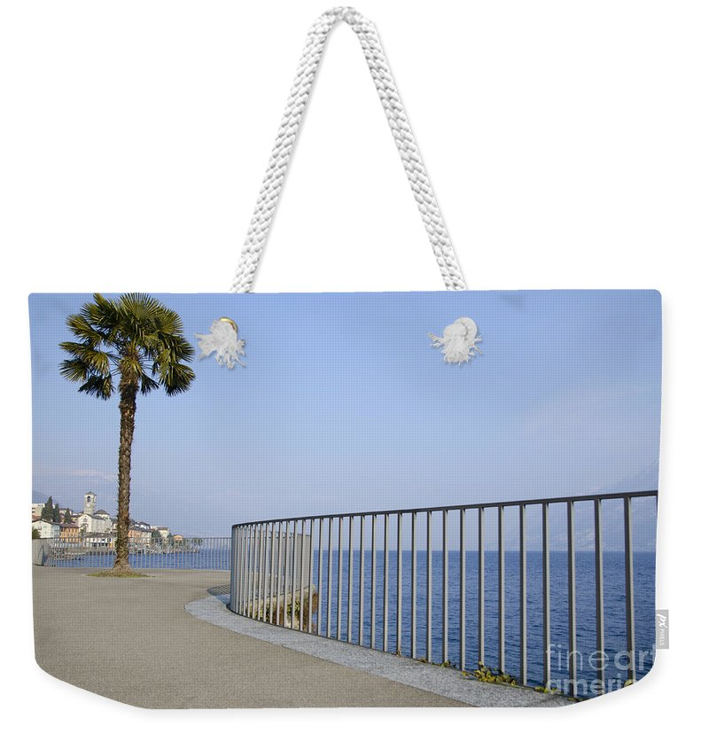 Palm Weekender Tote Bag featuring the photograph Palm Tree On The Lakefront by Mats Silvan