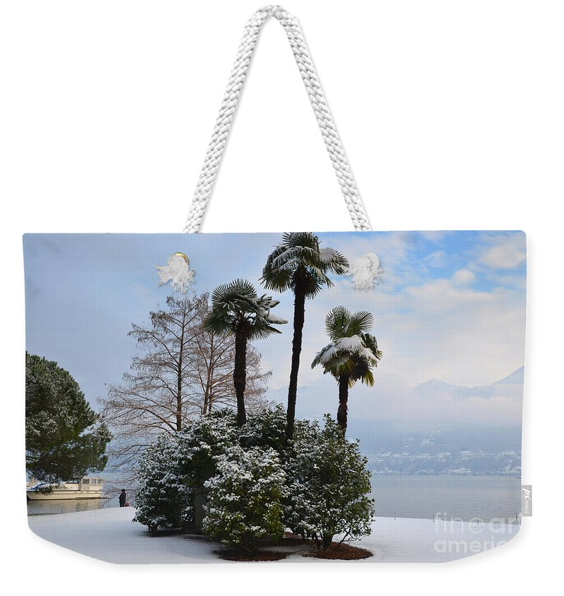 Palm Weekender Tote Bag featuring the photograph Palm Trees With Snow by Mats Silvan