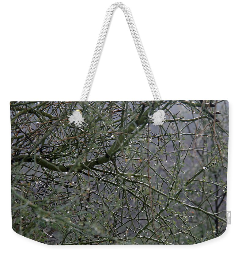 Palo Verde Weekender Tote Bag featuring the photograph Palo Verde In The Rain by Elizabeth Rose