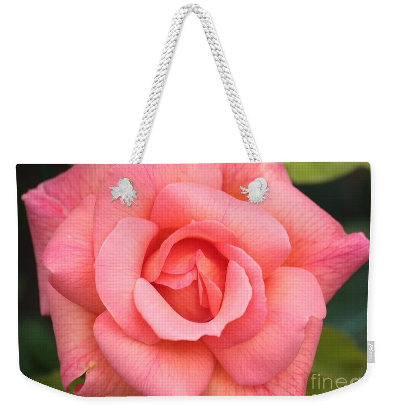 Rose Weekender Tote Bag featuring the photograph Paris Rose by Carol Groenen