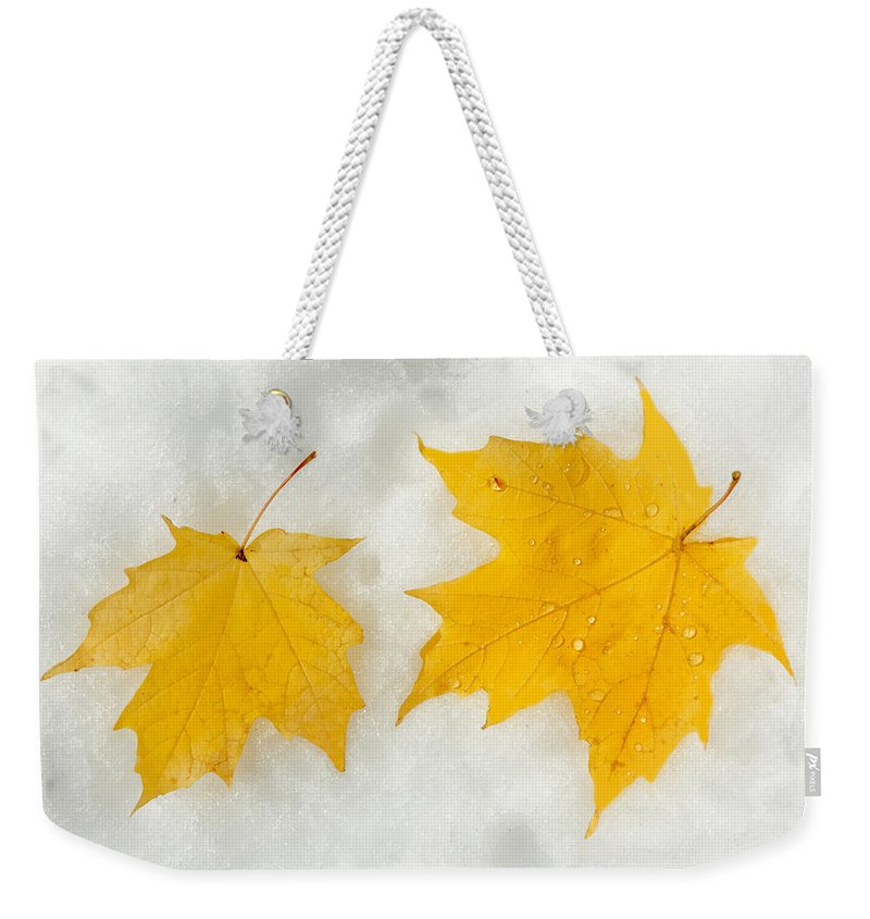 Fall Weekender Tote Bag featuring the photograph Partners Till The End by Greg Fortier