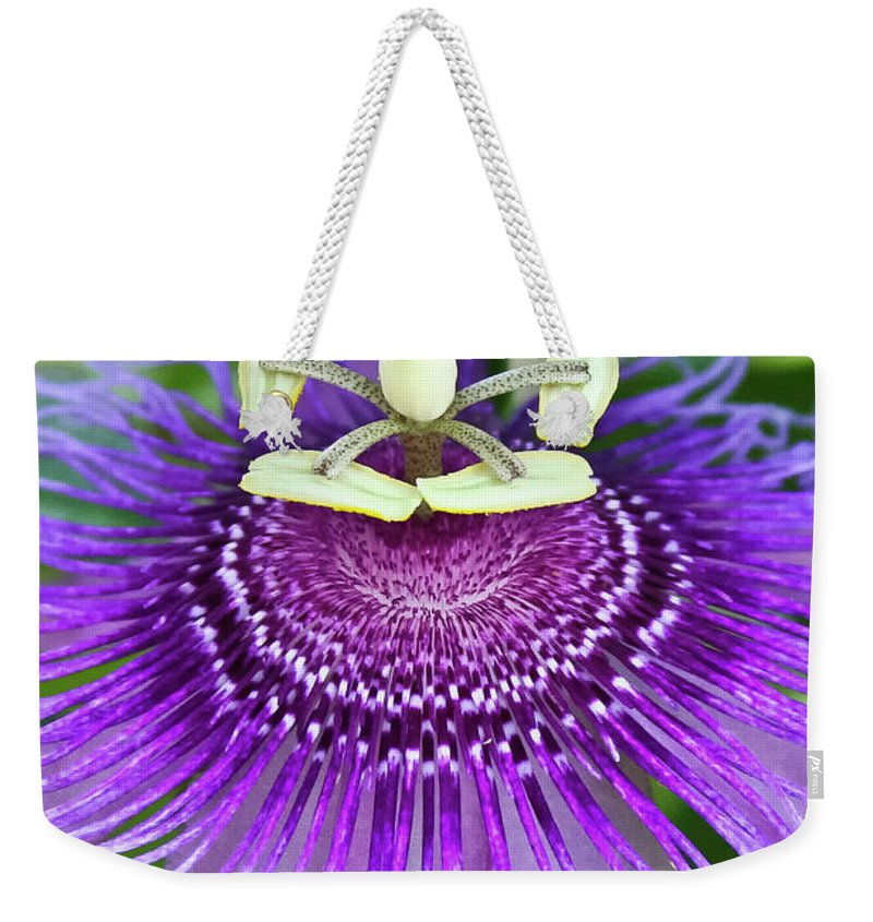 Cultivated Flowers - Plants Weekender Tote Bag featuring the photograph Passion Flower by Albert Seger