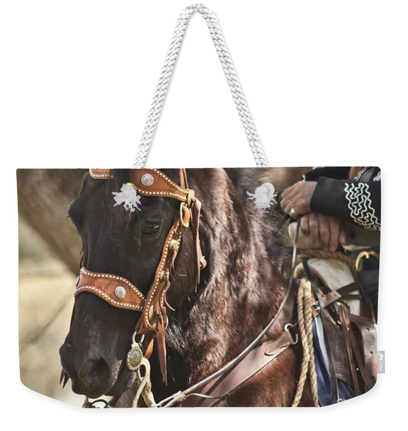 Washington On The Brazos Weekender Tote Bag featuring the photograph Patiently Waiting by Kim Henderson
