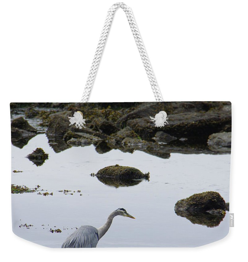 Heron Weekender Tote Bag featuring the photograph Patiently Waiting by Marilyn Wilson