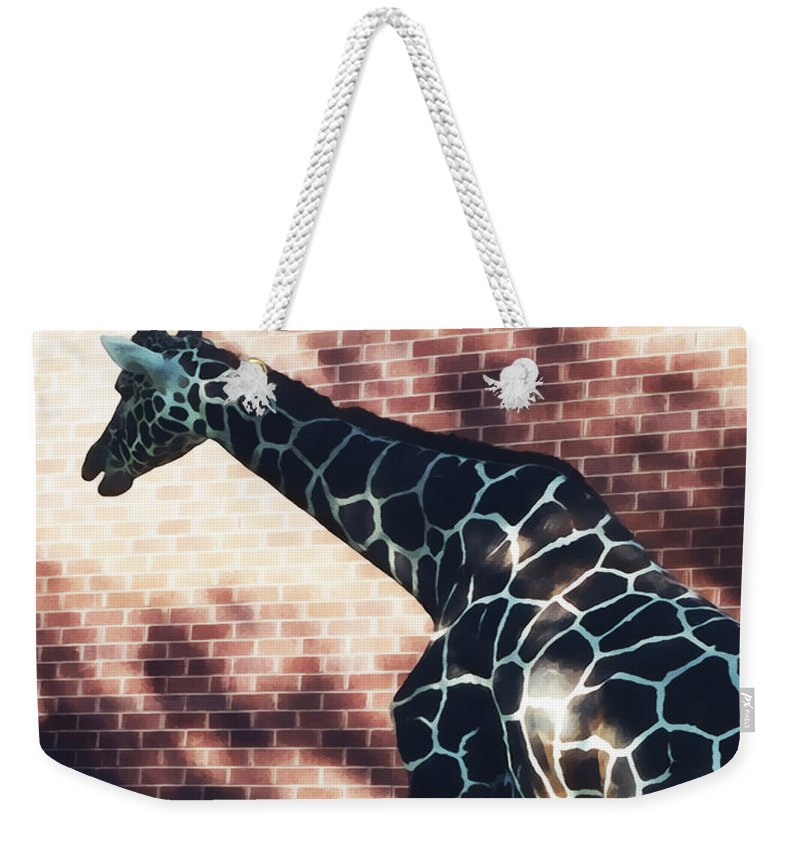 Pattern Weekender Tote Bag featuring the photograph Patterns by Terry Fiala