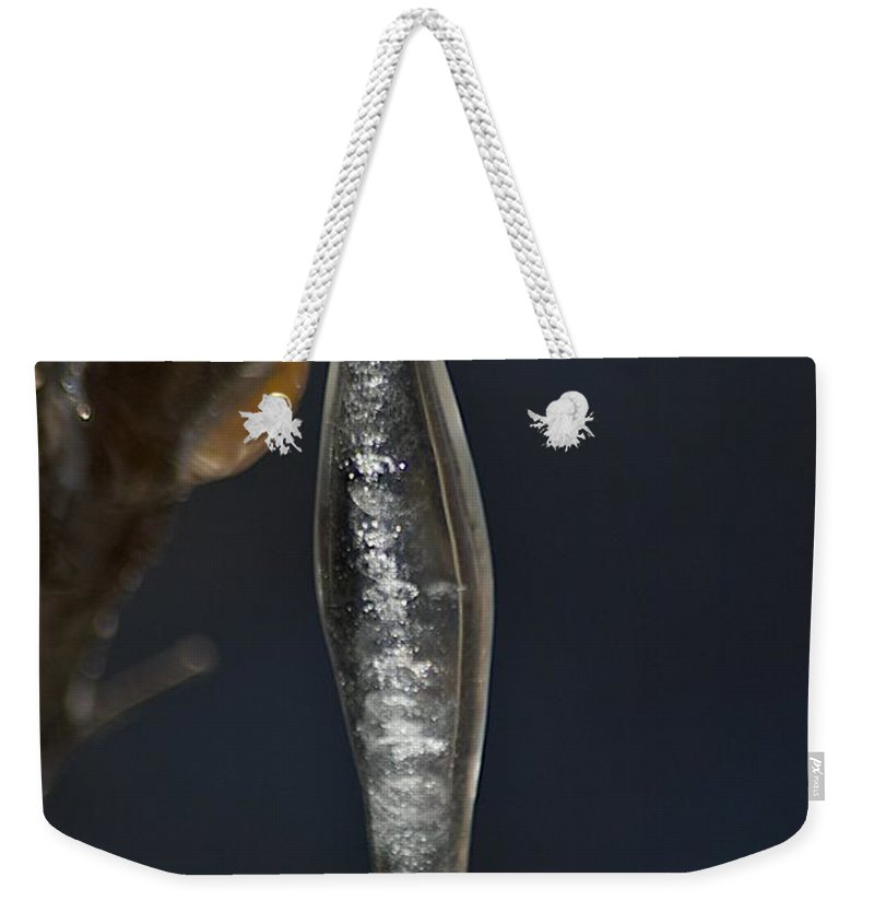 Ice Weekender Tote Bag featuring the photograph Pea Pod by Joseph Yarbrough