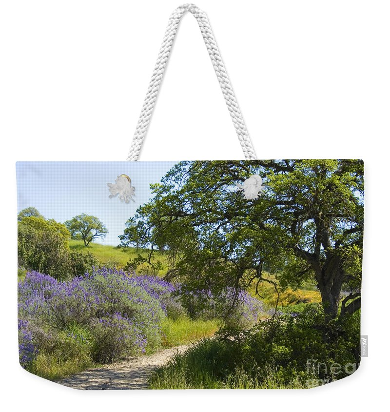 Knights Ferry Weekender Tote Bag featuring the photograph Peaceful Path by Jim And Emily Bush