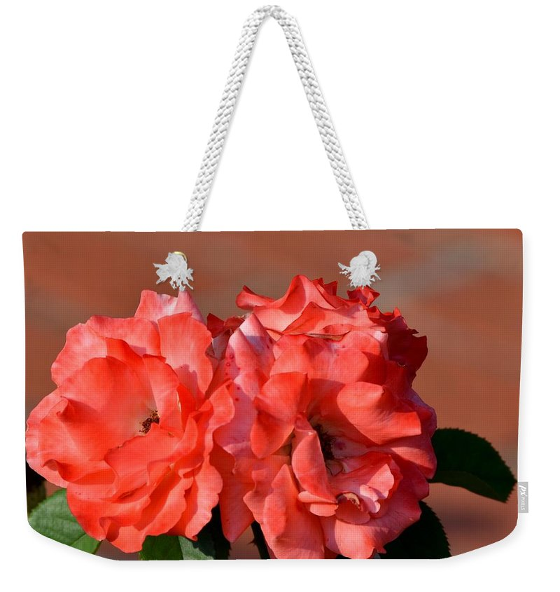 Peach Weekender Tote Bag featuring the photograph Peach On Peach by Maria Urso