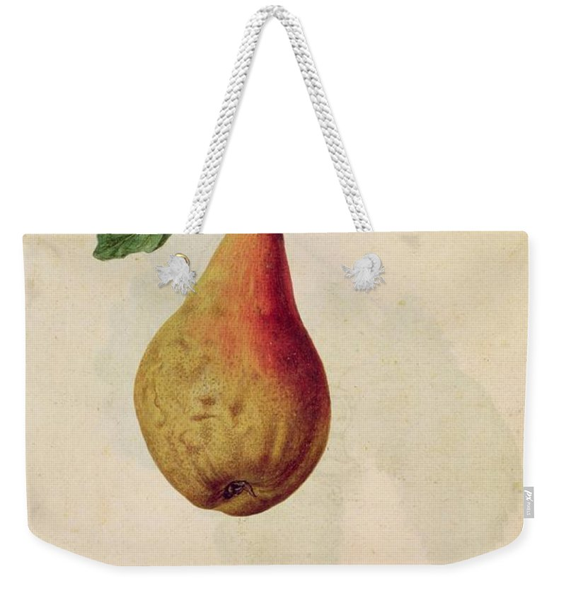 Still-life Weekender Tote Bag featuring the painting Pear  Pyrus Communis by J le Moyne de Morgues