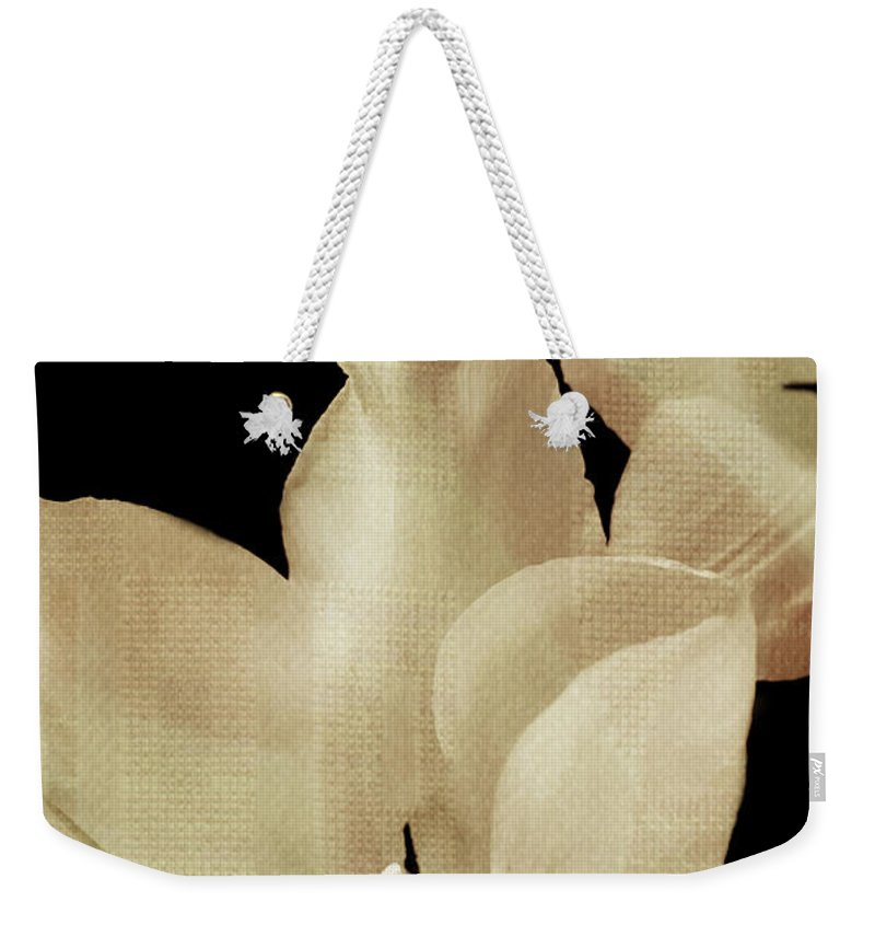 Flower Weekender Tote Bag featuring the photograph Peggy Sue by Trish Tritz