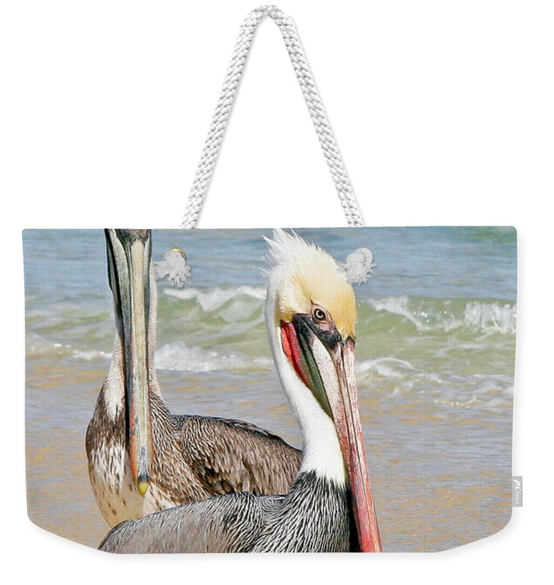 Animals Weekender Tote Bag featuring the photograph Pelican Pair by Jean Noren