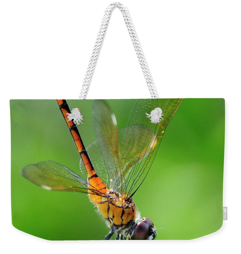 Pennant Weekender Tote Bag featuring the photograph Pennant Dragonfly Obilisking by Bill Dodsworth