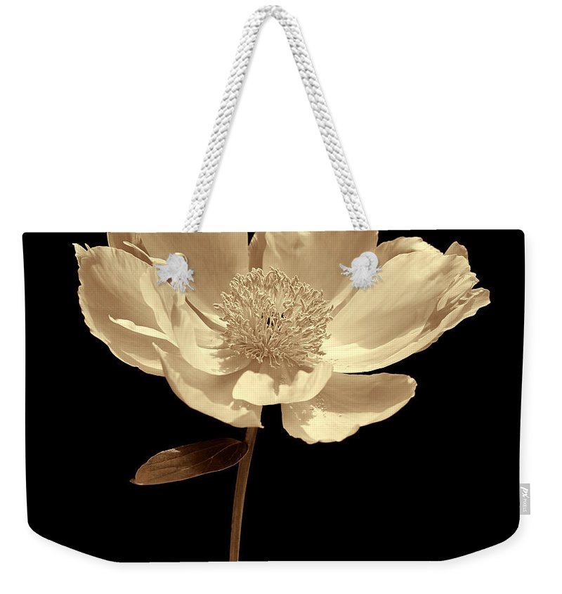Peony Weekender Tote Bag featuring the photograph Peony Flower Portrait Sepia by Jennie Marie Schell