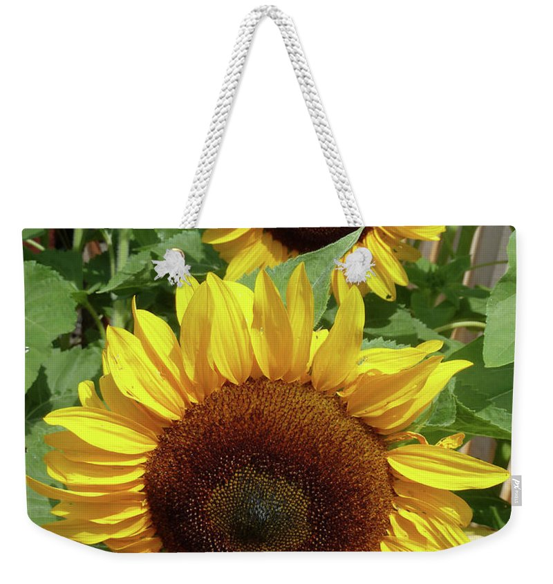 Landscape Weekender Tote Bag featuring the photograph Piggyback by Lauren Leigh Hunter Fine Art Photography