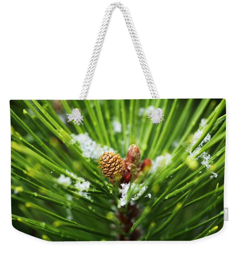 Pine Weekender Tote Bag featuring the photograph Pine Cone Cloeup by Marilyn Hunt