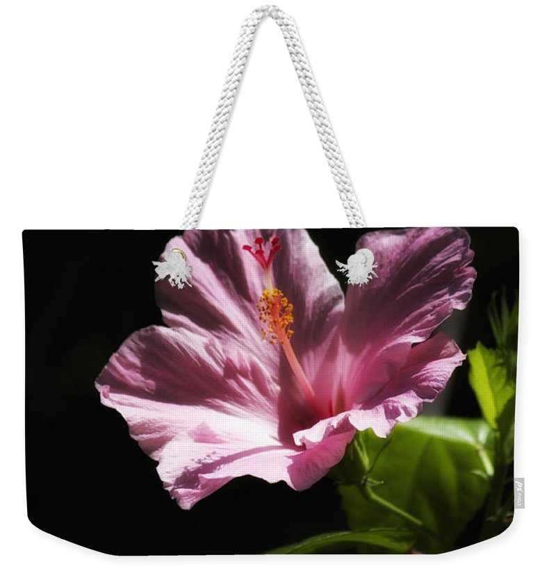 Florals Weekender Tote Bag featuring the photograph Pink Hibiscus by Linda Dunn
