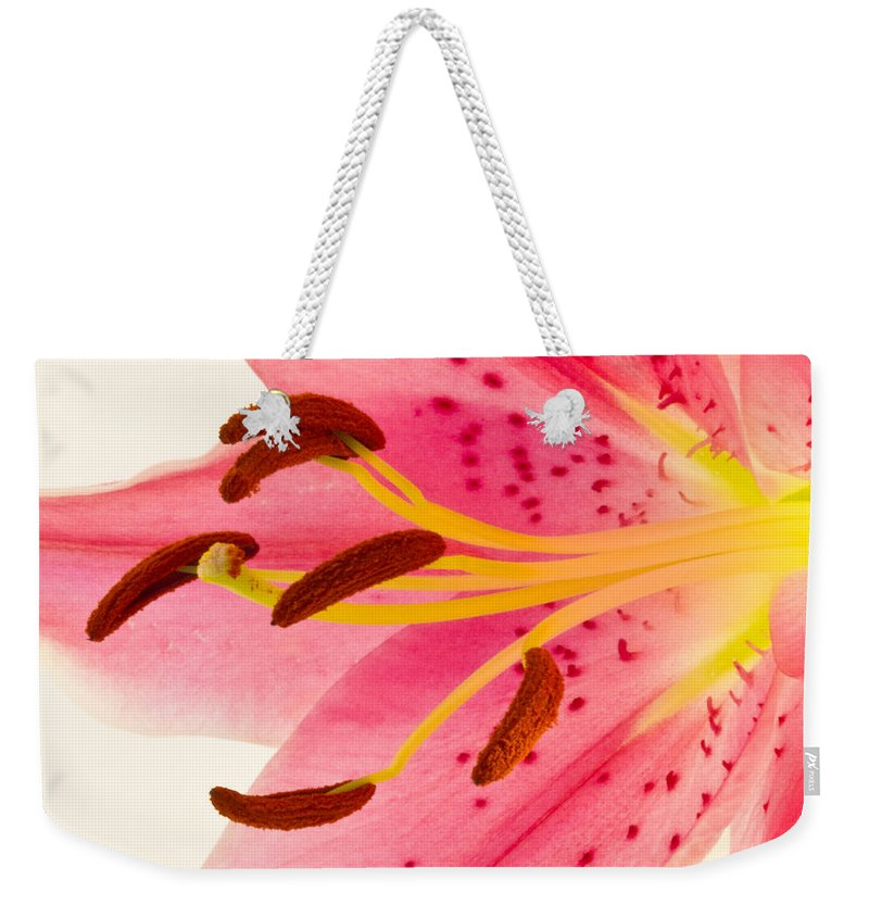 Lily Weekender Tote Bag featuring the photograph Pink Lily Square Version by Bill Swindaman