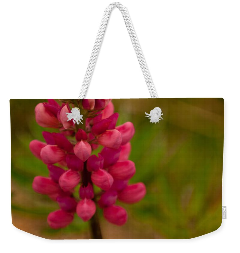 pink Lupine Weekender Tote Bag featuring the photograph Pink Lupine by Paul Mangold
