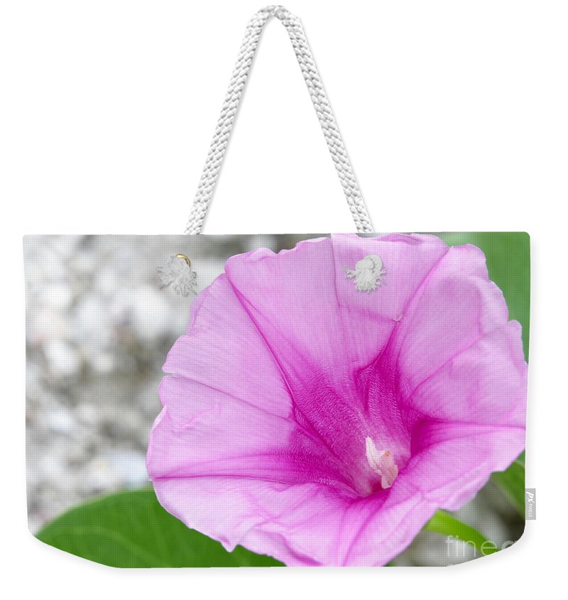 Landscape Weekender Tote Bag featuring the photograph Pink Morning Glory Flower by Sabrina L Ryan