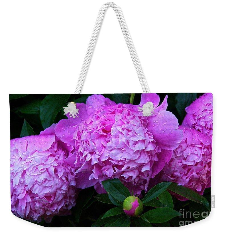 Pink Peonies Weekender Tote Bag featuring the photograph Pink Peonies In The Rain by Byron Varvarigos