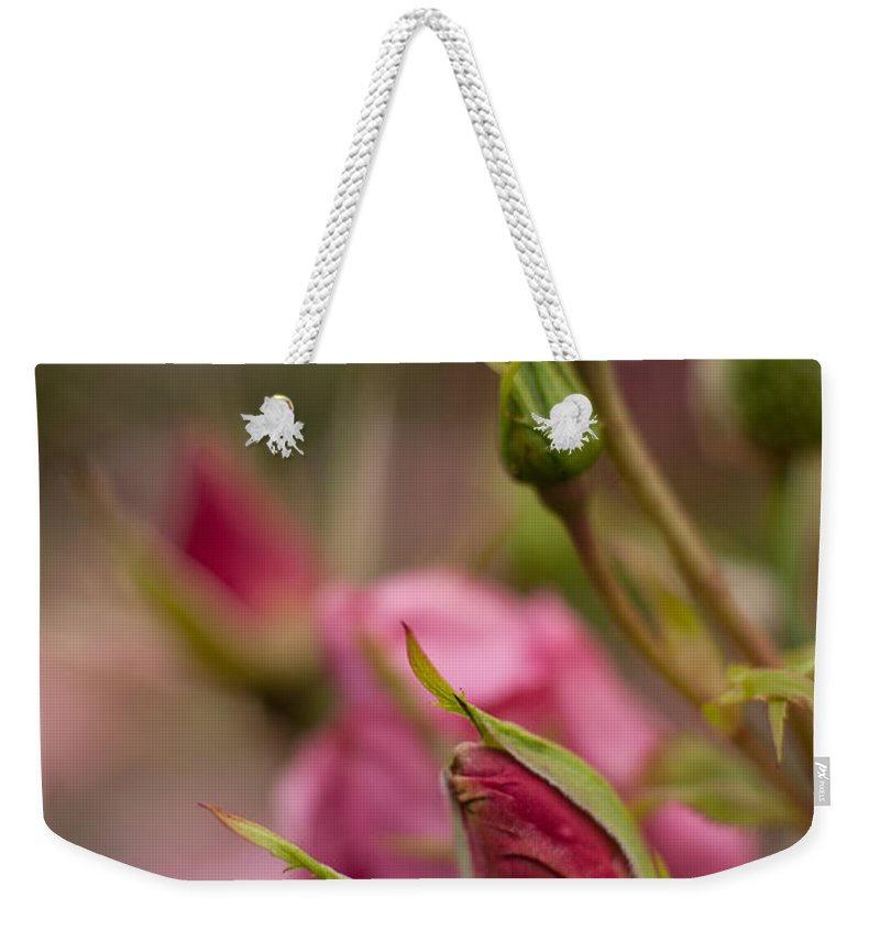 Flower Weekender Tote Bag featuring the photograph Pink Roses by Mike Reid