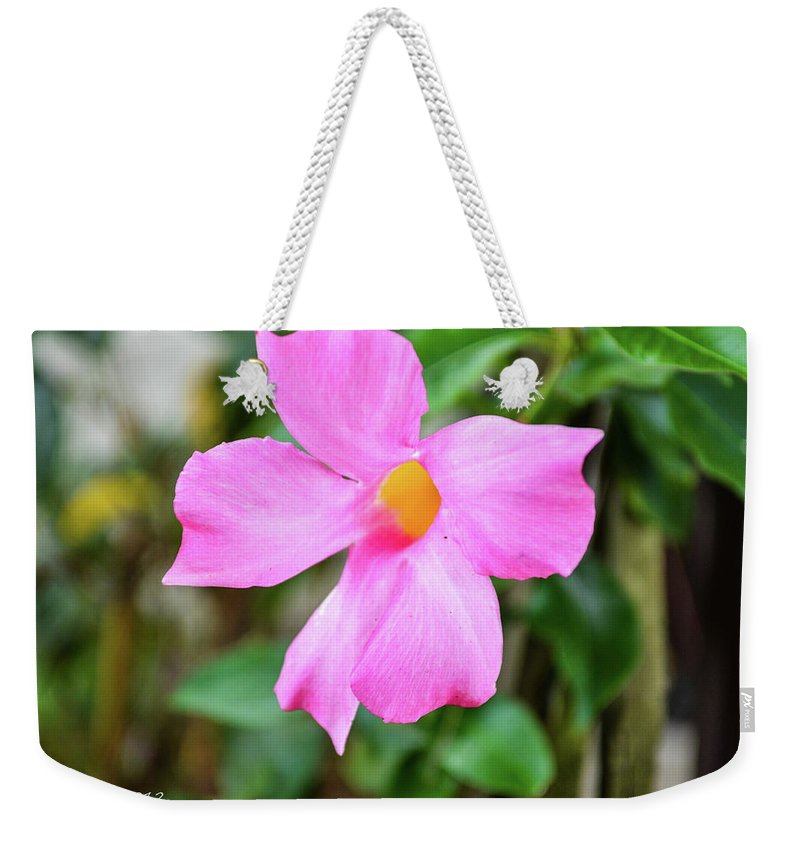 Flowers Weekender Tote Bag featuring the photograph Pink by Shannon Harrington