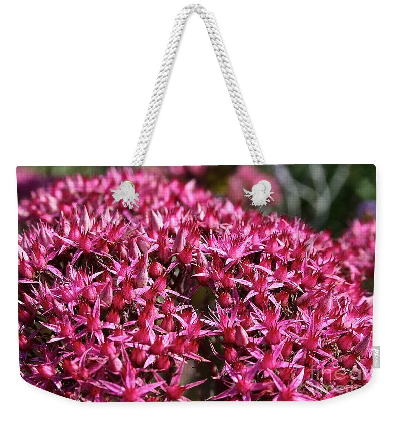 Outdoors Weekender Tote Bag featuring the photograph Pink Starz by Susan Herber
