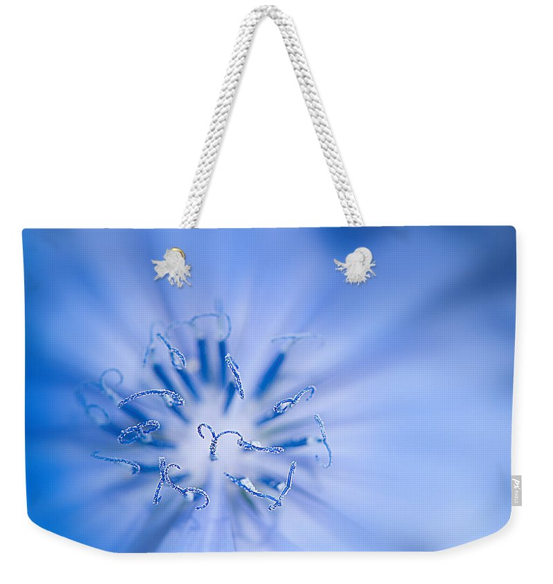 Blue Flowers Weekender Tote Bag featuring the photograph Pollination Blue Chicory by Randall Branham