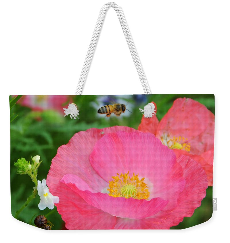 Poppies Weekender Tote Bag featuring the photograph Poppies And Pollinator by Lynn Bauer