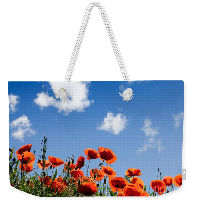 Poppy Weekender Tote Bag featuring the photograph Poppy Flowers 05 by Nailia Schwarz