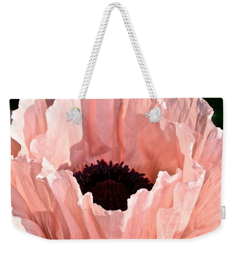 Plant Weekender Tote Bag featuring the photograph Poppy Pink by Susan Herber