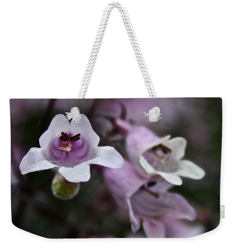 Outdoors Weekender Tote Bag featuring the photograph Prairie Smoke by Susan Herber