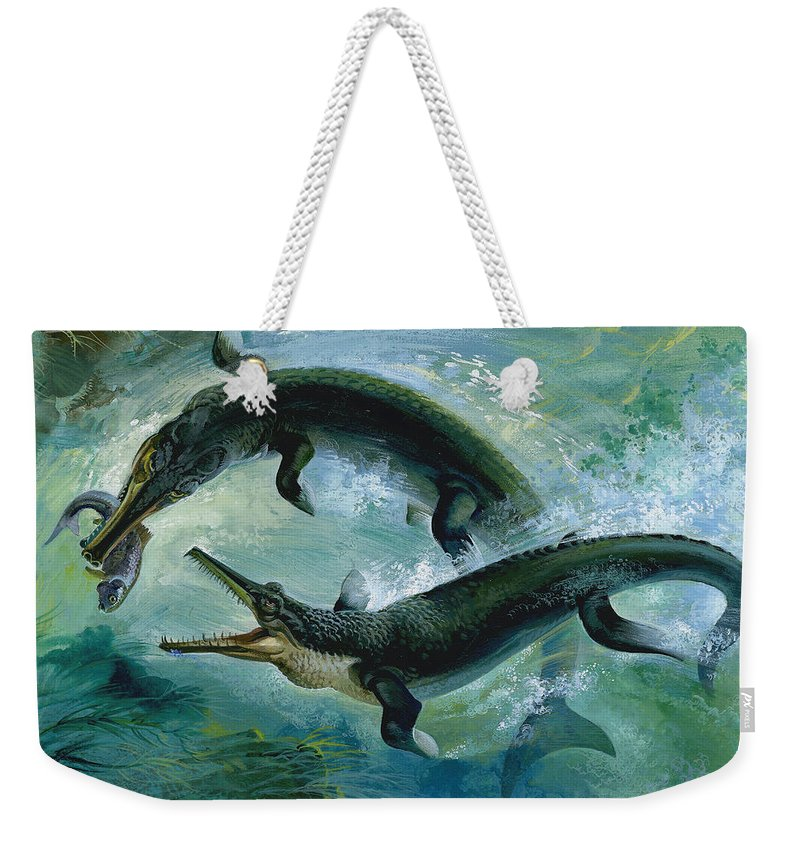 Creature; Predator; Attack; Underwater; Sea Creatures; Food Chain; Eating; Green; Water; Green; Bubbles Weekender Tote Bag featuring the painting Pre-historic Crocodiles Eating A Fish by Unknown