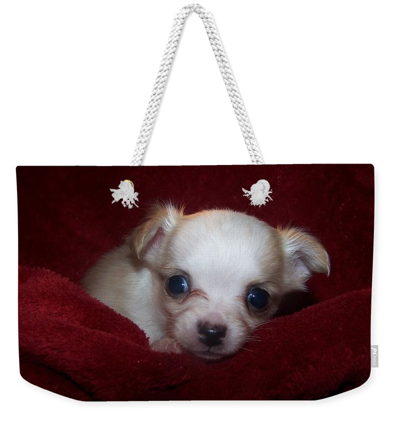 Digital Photography Weekender Tote Bag featuring the photograph Precious by Christy Leigh