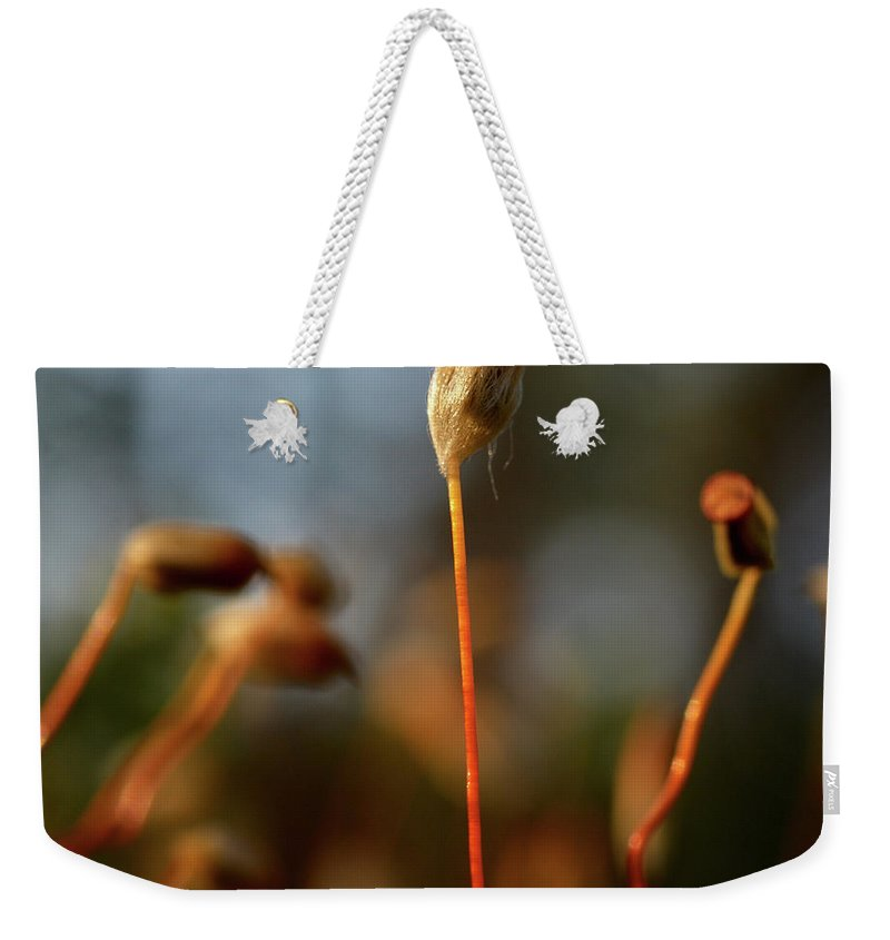 Jouko Lehto Weekender Tote Bag featuring the photograph Press Conference by Jouko Lehto