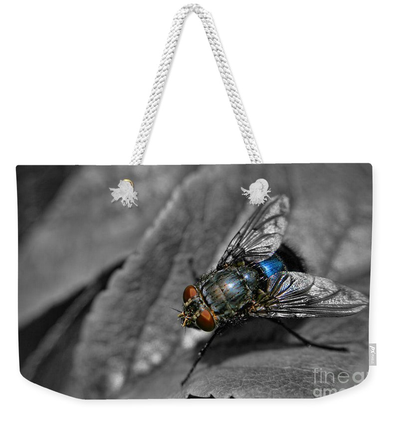 Yhun Suarez Weekender Tote Bag featuring the photograph Pretty Fly For A Fly Guy by Yhun Suarez