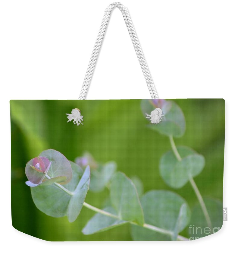 Plant Weekender Tote Bag featuring the photograph Pretty Pastels by Living Color Photography Lorraine Lynch