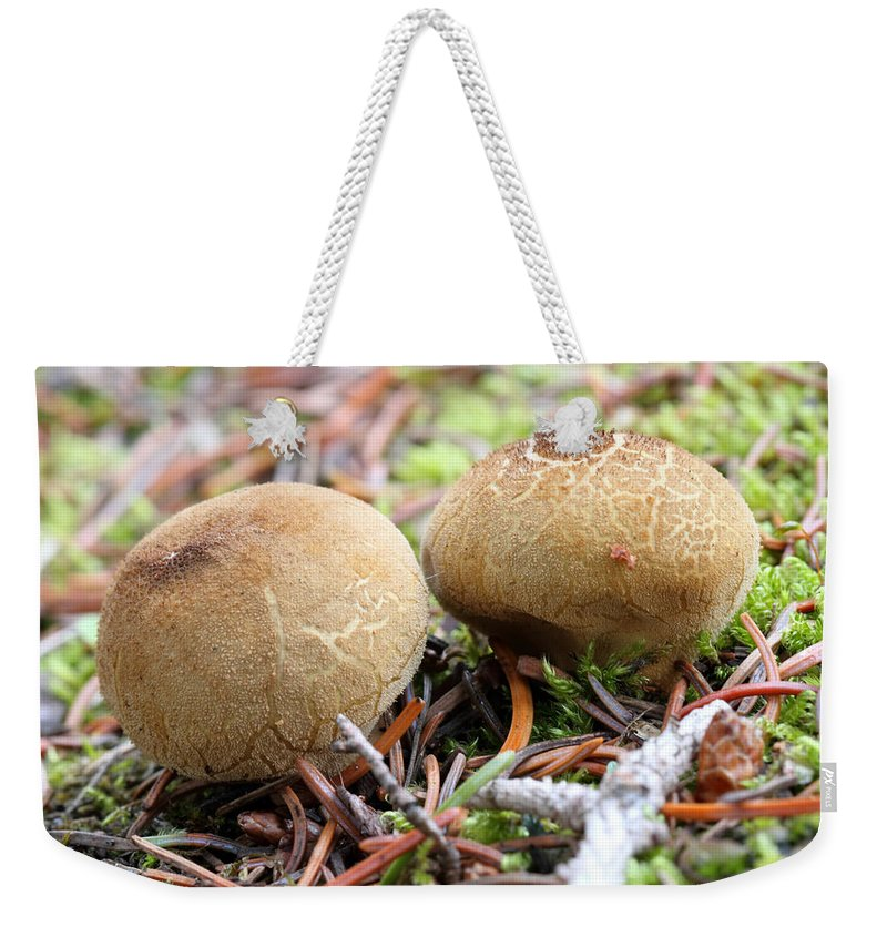 Doug Lloyd Weekender Tote Bag featuring the photograph Puffballs by Doug Lloyd