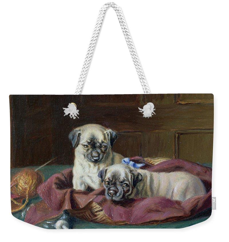 Pug Puppies In A Basket Weekender Tote Bag featuring the painting Pug Puppies In A Basket by Horatio Henry Couldery