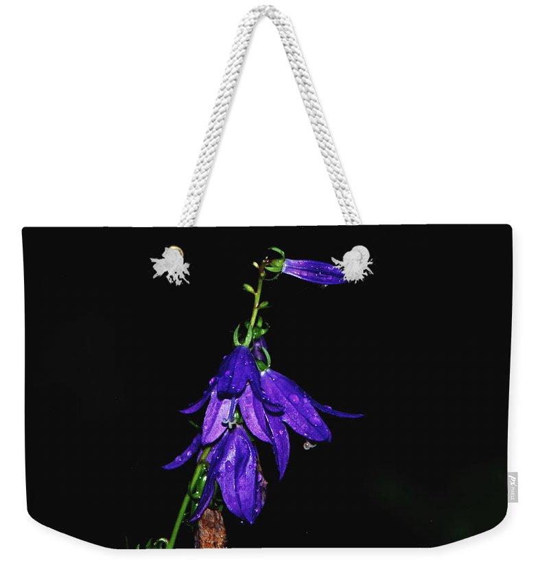 Purple Weekender Tote Bag featuring the photograph Purple Beauty by Grace Grogan