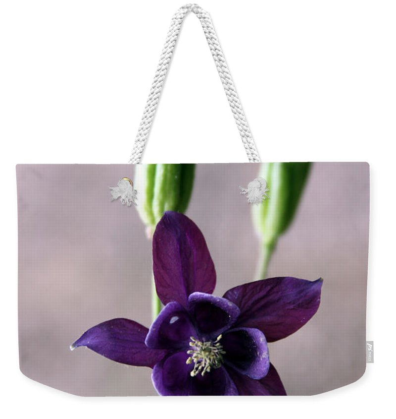 Flower Weekender Tote Bag featuring the photograph Purple Star by Carolyn Stagger Cokley