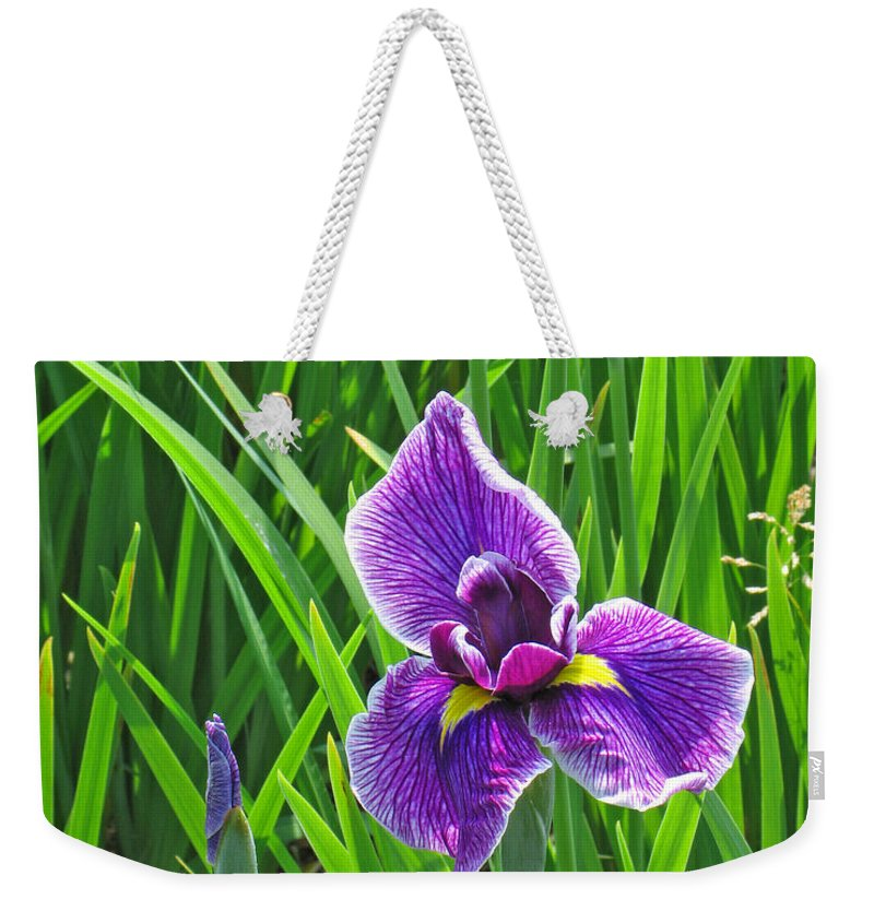 Purple Water Iris Weekender Tote Bag featuring the photograph Purple Water Iris by Greg Matchick