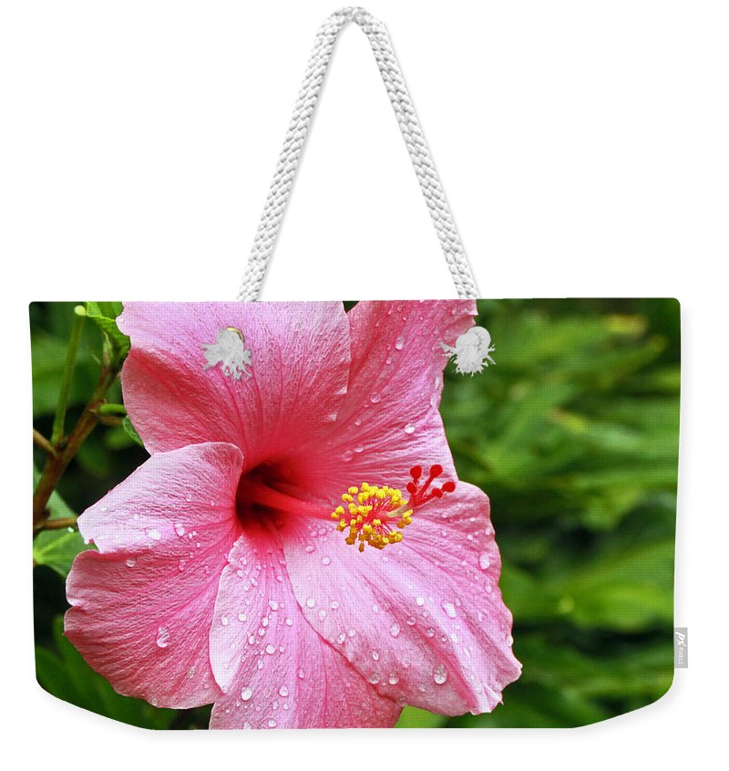 Flower Weekender Tote Bag featuring the photograph Queen Of The Tropics by Rebecca Morgan