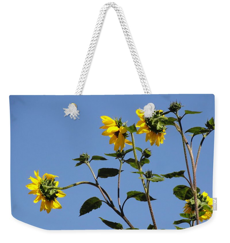 Sunflower Weekender Tote Bag featuring the photograph Quicksilver Sun by Shannon Grissom