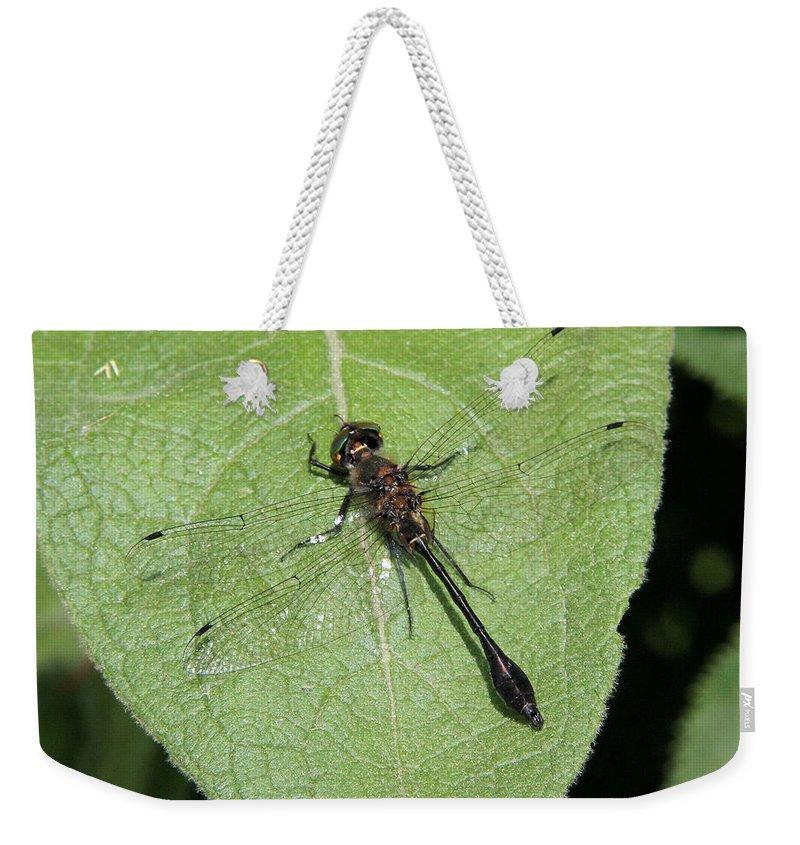 Racket-tailed Emerald Weekender Tote Bag featuring the photograph Racket-tailed Emerald Dragonfly by Doris Potter