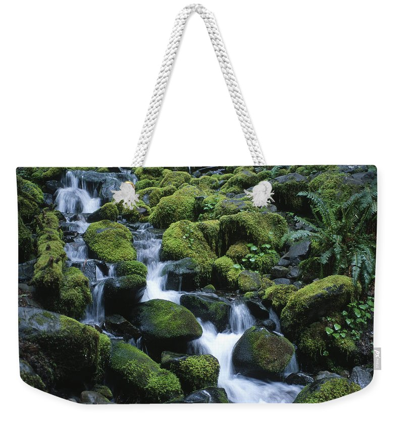 Rainforest Weekender Tote Bag featuring the photograph Rain Forest Stream by Sandra Bronstein