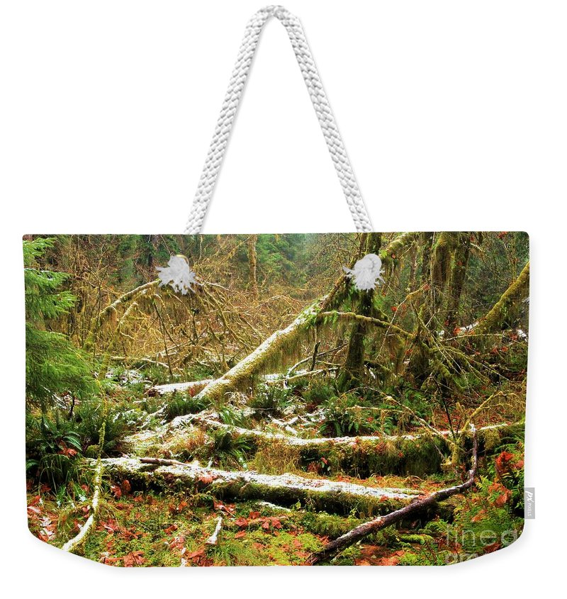 Hoh Rainforest Weekender Tote Bag featuring the photograph Rainforest Dusting by Adam Jewell